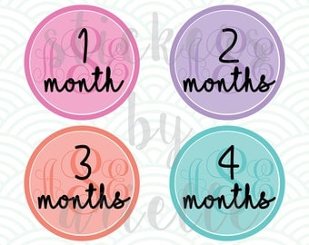 Month by Month Baby Stickers - Monogram