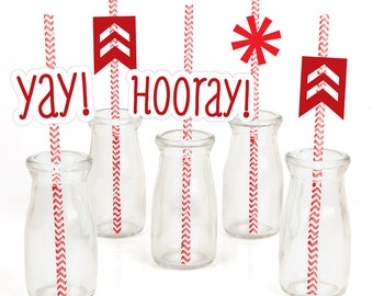 Chevron Red - Party Straw Décor with Paper Straws - Set of 24