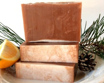 Warm And Cozy Soap, Winter Soap, Autumn Soap, Natural Soap, Homemade Soap, Vegan Soap