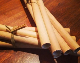 Pack of 10 Natural Bamboo Drinking Straws