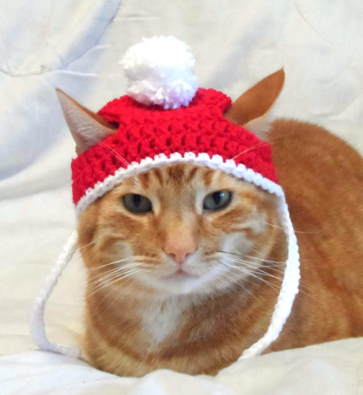 Crochet Cat Hat Christmas Santa Hat for Cats Cat Christmas
