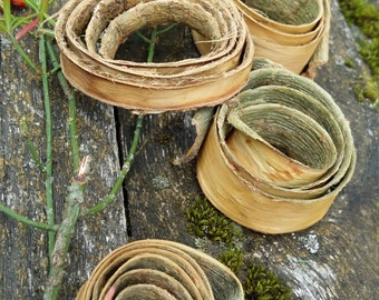 rustic home decor primitive willow wood bark decor wooden tree small round eco natural simple handmade unique art woodland forest botanical