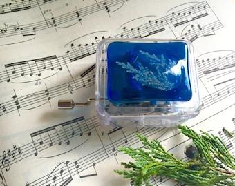 Blue Music Box, Small Music Box, Manual Music Box, Disney Frozen Music Box, Acrylic Music Box, Children's music box, Custom music box.