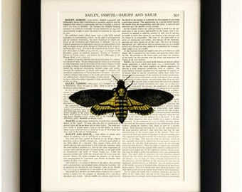 ART PRINT on old antique book page - Large Death Moth, Vintage Upcycled Wall Art Print, Encyclopaedia Dictionary Page, Fab Gift!