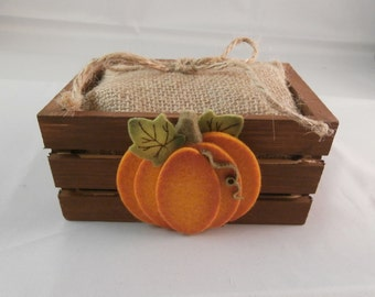 Pumpkin wedding decorations, ring bearer alternative for autumn wedding