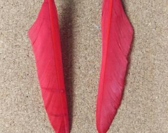 Fiery feather tribal earrings