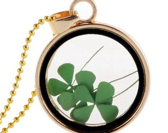 Floating charm with genuine vierblättrigem clover leaf necklace