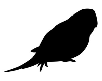 Parakeet Budgie Die-Cut Decal Car Window Wall Bumper Phone Laptop