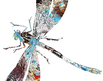 DRAGONFLY Watercolor print by Tara Tet