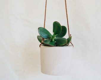 Latte cement hanging planter