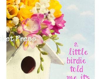 Digital Birthday Card, Birdie