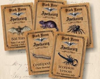 Apothecary Labels, Halloween Printables, DIY Printable Halloween Apothecary Labels, Set of 8 Labels, Halloween Party Decor, DIY Halloween