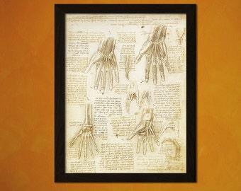 Da Vinci Anatomy - Medical Decor Human Anatomical Vintage Wall Decor Office decoration Human Anatomy Science Art Anatomicalt