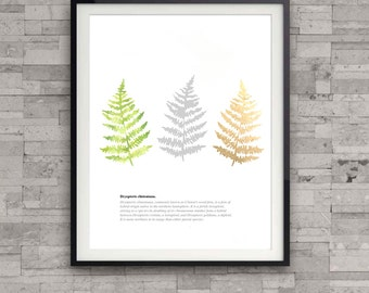 Fern watercolor art print, nature illustration print, botanical art print, leaf print, modern wall art, home wall decor, apartment decor