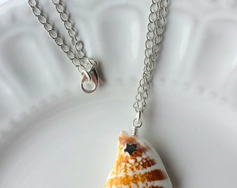 Large Shell Pendant Necklace, Natural Shell Pendant, Star Necklace, Shell Necklace, Silver Necklace, 18 inch Necklace