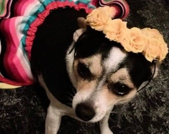 Dia De Los Muertos Small  Dog Dress Costume Handmade One of A Kind!