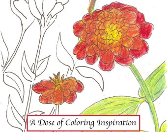 Adult Coloring The Art Prescription (™) Deck: A Dose of Coloring Inspiration