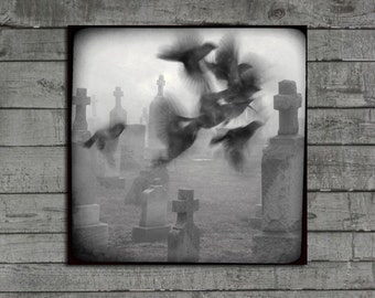 Gothic Black And White Photograph, Eerie, Crows In Motion, Halloween Art, Necropolis, Tombstones, Graveyard, Ravens - Ghost Birds