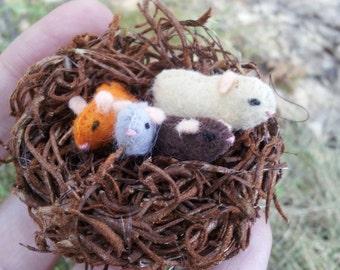 Tiny Guinea Pig Nest -- miniature guinea pigs baby guinea pig felted guinea pig felt guinea pig plush stuffed guinea pig