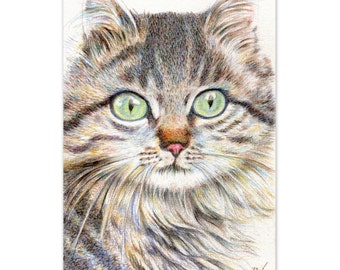 "cat drawing art print  ""A Handsome Cat ""  long haired cat painting cat lover's gift unique wall decor desk decoration"