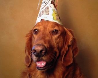 Dog Birthday Party Hat-Gift-Puppy