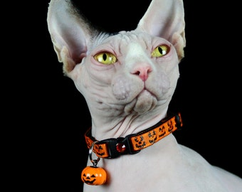 Halloween Cat Collar - Glittery Jack-O-Lantern Faces on Orange - Kitten or Large Size