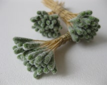 Millinery Supply Vintage Stamens French Silk Paper Flowers Floristry Basketry Ribbon Work Dolls Hats Miniature DIY Craft 24 Soft Green Peps