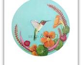 HUMMINGBIRD ILLUSTRATION / Blue Hummingbird Print / Garden Bird