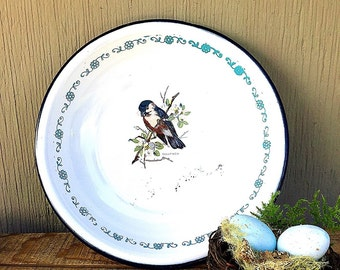 Enamelware Bowl with Bird | Vintage c.1930's Shallow White Enamel Bowl with Blue-trim, Floral Band, Bullfinch | TrEs Monterrey Mexico