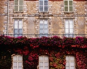 France Photograph, Architecture Print, French Door Photo, Stone Building, Ivy Photograph, Country French Decor, Castle Art Print, Jewel Tone