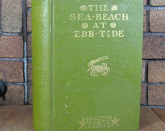 SALE - Sea Beach at Ebb Tide by Augusta Foote Arnold - HC 1st Ed 1901 - SALE (was 45 usd)