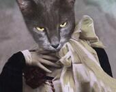 Madam Gray, Cat Print, Creepy Cat Photo, Anthropomorphic, Altered Photo, Halloween Cat Print, Photo Collage, Whimsical Art