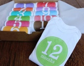 Set of 12 Month 2 Month Baby Milestone Girl Collection, Perfect Baby Shower Gift, Comes with Gift Box, Paper Wrap and Gift Tag