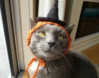 Halloween Costume for Cat Witch Hat for a Cat Holiday Hat Fall Orange Black Funny Cat Hat Knit Cat Hat Crochet Cat Hat Pet Clothing Present