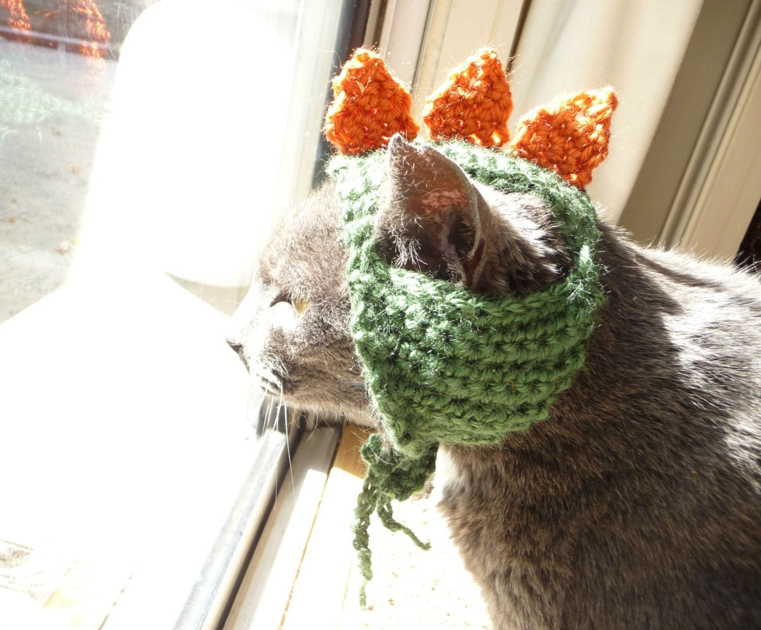 Cat hat crochet pattern dino hat dinosaur hat pet halloween zoom bankloansurffo Image collections