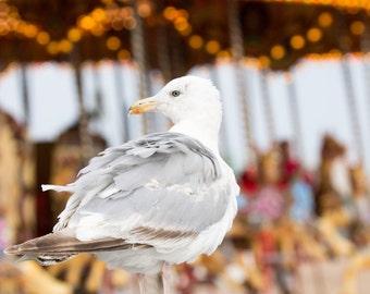 Seaside Print - Seagull by the Carousel Fine Art Photograph - Brighton, England - Retro Home Decor