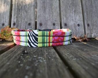 Watermelon Zebra Print Dog Collar