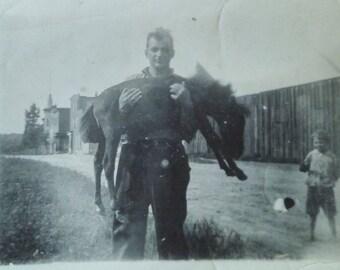 Vintage Horse photo Man holding a foal original photo