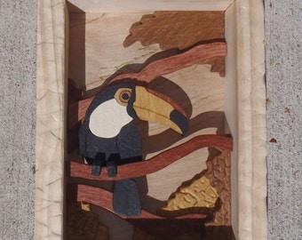 Hanging Shadowbox Toucan 1