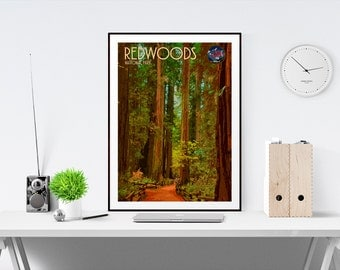 Redwoods National Park - US National Parks - Art Print - (Available In Many Sizes)