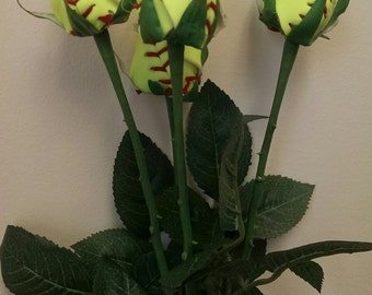 Single Baseball and softball long stem roses