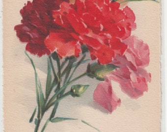 Beautiful Yellow,Red,Orange And Pink Carnations Flowers With Buds A/S C. Klein Antique Postcard