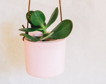 Mini cement hanging planter pink