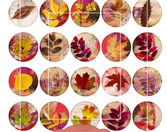 Fall Leaves Clip Art, Digital Collage Sheet, 1.5 inch and 1 inch circles, Digital Downloads, autumn leaves, colorful leaf clip art, cabochon