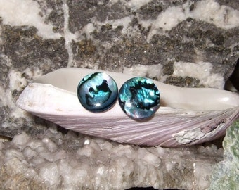 Blue Paua Shell Stud Earrings Titanium Posts and Clutches Handmade in Newfoundland 10mm Round Hypo Allergenic