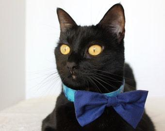 Blue Bow Tie Collar for Cat Wedding Occassions
