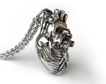 Anatomical Heart Necklace in Polished Pewter, Anatomical Jewelry
