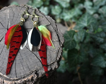 Red earrings, long real feather earrings, natural red feather earrings