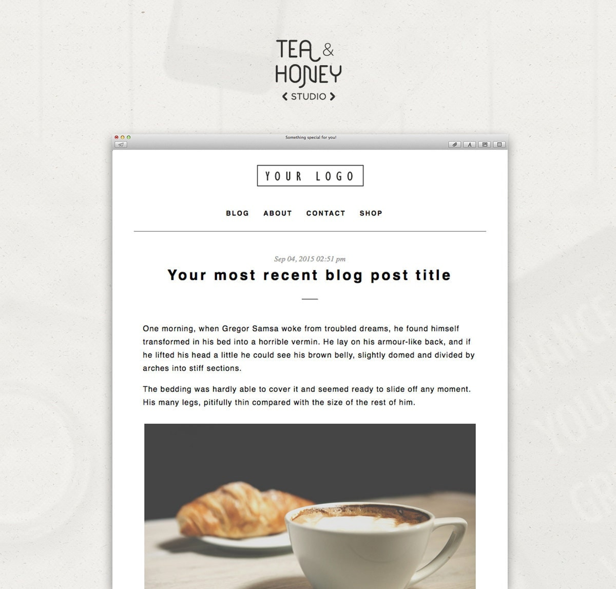 mailchimp template etsy