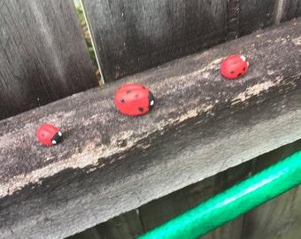 porcelain ladybugs